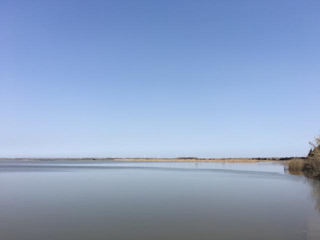 上海崇明島は島内に湖が老いです。さすが湿地帯。