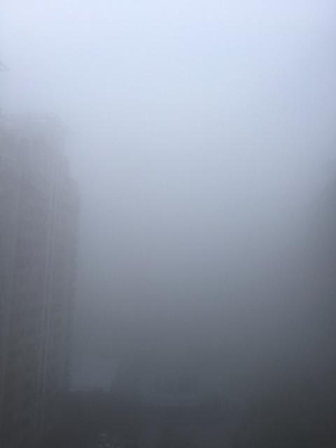 キリの上海