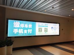 上海浦東にて