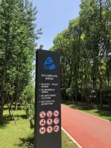 最近整備された上海世紀公園のジョギングコース、1周5キロです。